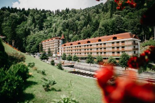Sairme Hotels & Resorts, Bagdati
