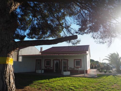 Casa das Pipas #6, Palmela