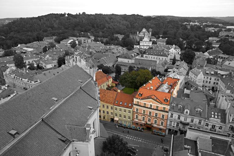 The Narutis Hotel, Vilniaus
