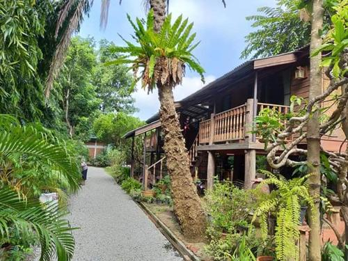 3 Sparrows house bed and breakfast, San Pa Tong