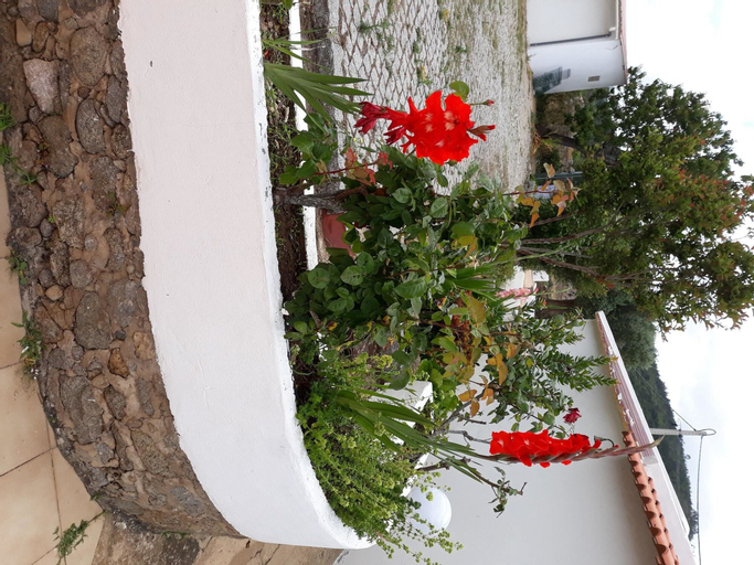 Apartment With one Bedroom in Monchique, With Shared Pool, Enclosed Garden and Wifi - 15 km From the Beach, Monchique