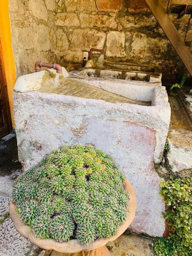 Hotel casa del Anticuario, Morelia