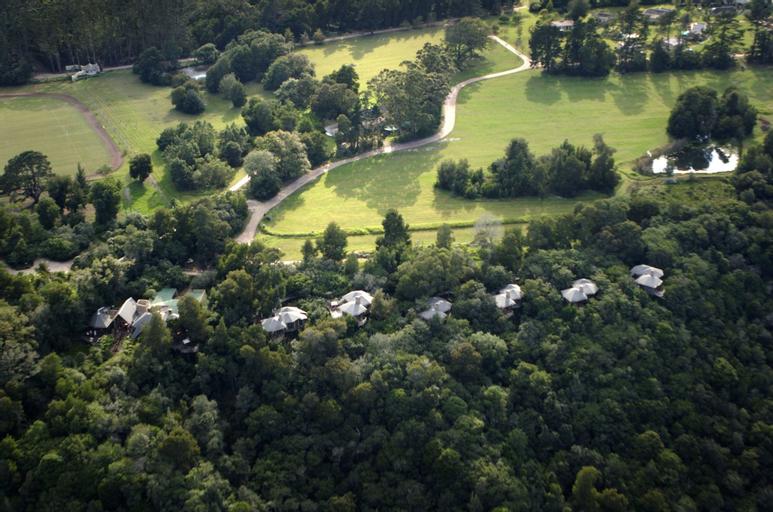 Tsala Treetop Lodge, Eden
