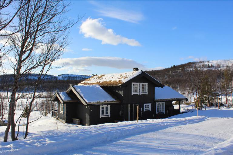 Kvitebjørn Cabin - Ål, Ål