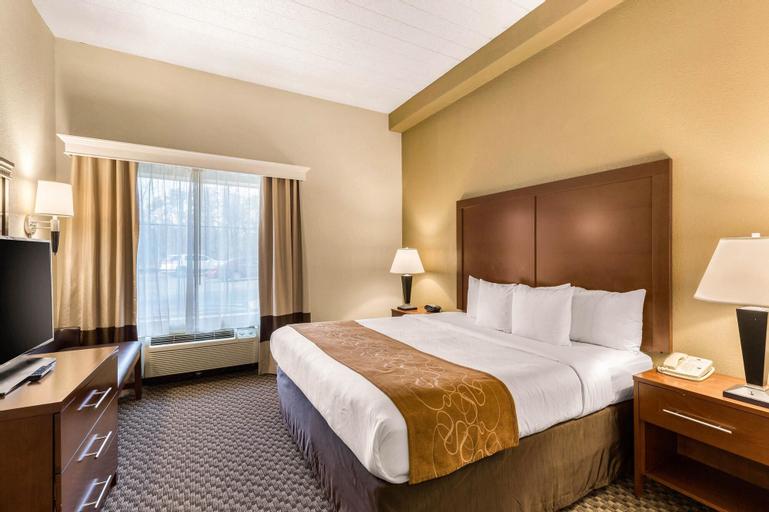 Comfort Suites Columbia Gateway Elkridge, Howard