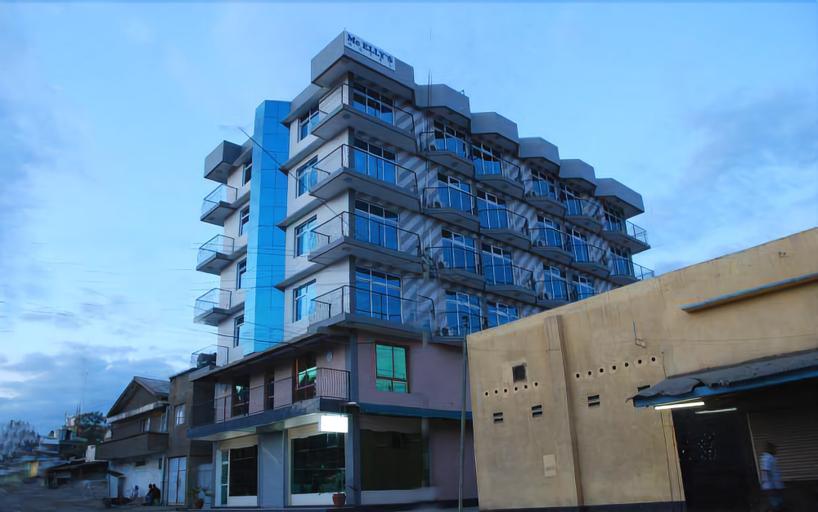 Mc-Ellys Hotel, Arusha Urban