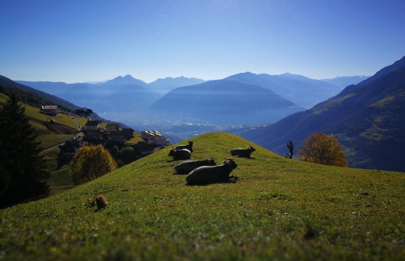Ferienwohnung Wiesbauer, Bolzano