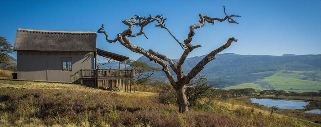 Ukuthula Lodge, Umgungundlovu