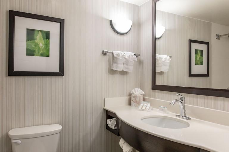 Hilton Garden Inn Orlando Seaworld, Orange