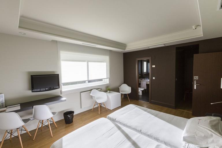 Hotel Río Bidasoa, Pyrénées-Atlantiques