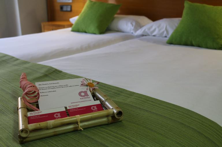 Hotel Alda Plaza Mayor, Salamanca