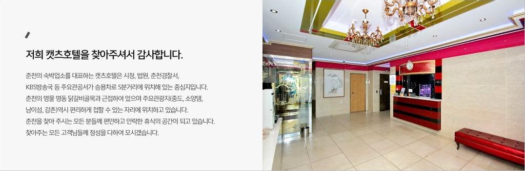 Cats Hotel, Chuncheon