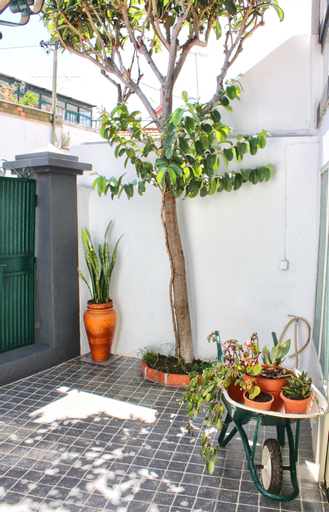 The House, Funchal