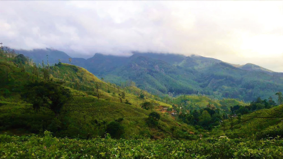 Riverston Holiday Home Stay, Matale