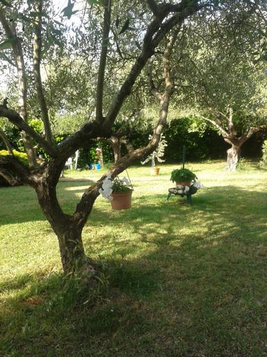 B&B Villa due Pini, Viterbo