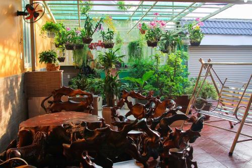 Nature House - Homestay Thu Duc, Ho Chi Minh - Sai Gon, Viet Nam, Thủ Đức
