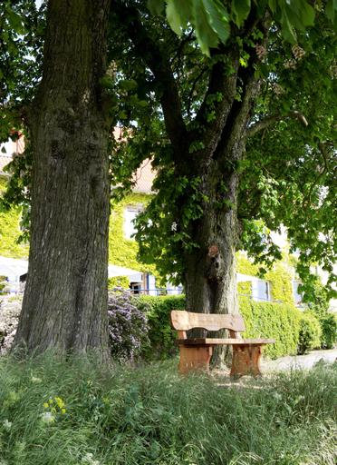 Hofgut Wißberg - Das Weinberghotel, Mainz-Bingen