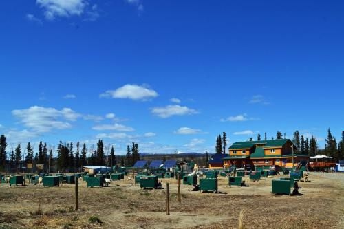 Muktuk Adventures - A place for people who love dogs, Yukon