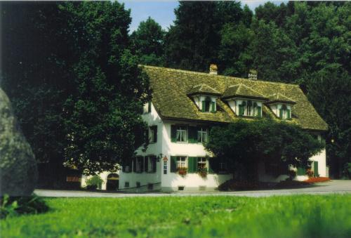 Hotel Krone Sihlbrugg, Zug