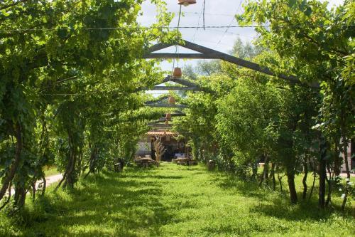 Hosteria - Bodega Valle Divino, José María Avilés