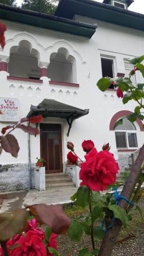 Vila Ana Lacramioara Concept, Calimanesti