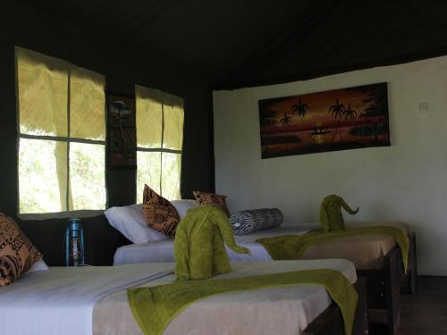 Zarafa Tented Camp, Liwale