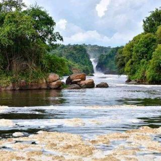 Kabalega safari adventures, Buruli
