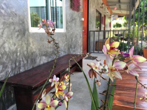 Muangchaem House, Mae Chaem