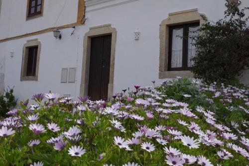 BellaVita Museum Paderne, Albufeira