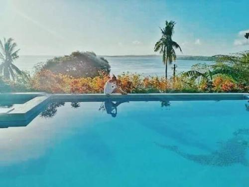SunSea Resort, Nueva Valencia