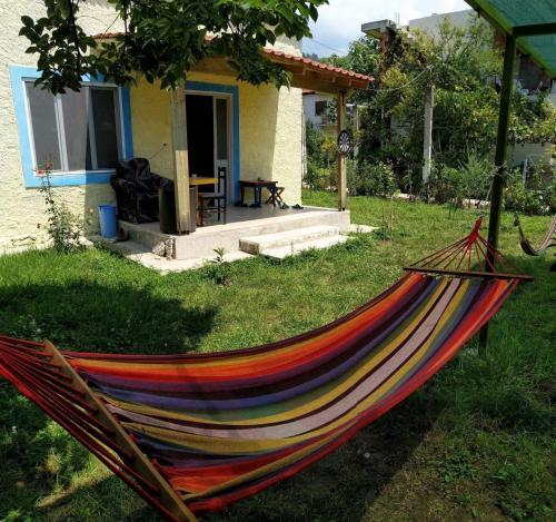 Backpacker Hostel, Elbasanit