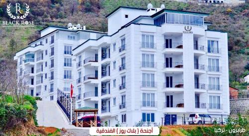 Black Rose Apartment, Arsin