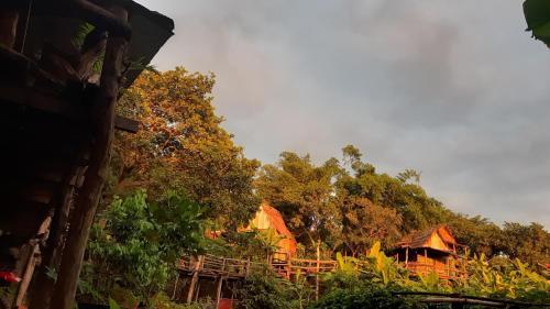 Tree Lodge Banlung, Ban Lung