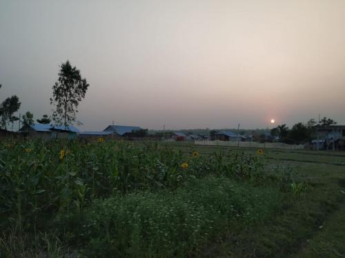 Gopal's Homestay, Koshi