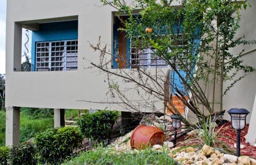 Kassa Wista Azzul-1 apartment & Kassa Wista Azzul-2 house,