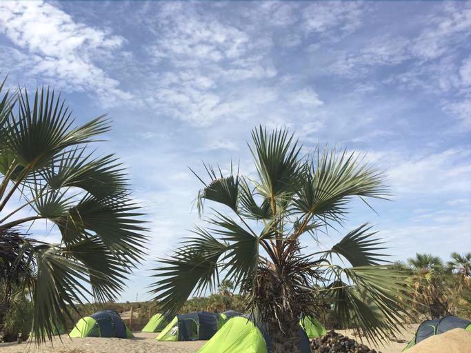 Napak Resort - Campsite, Turkana Central