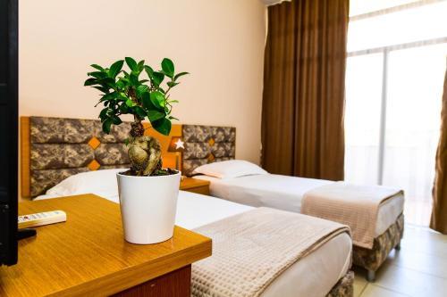 Hotel Princ, Shkodrës