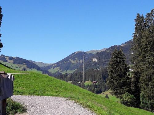 Ferien in der Bergwelt von Adelboden, Frutigen
