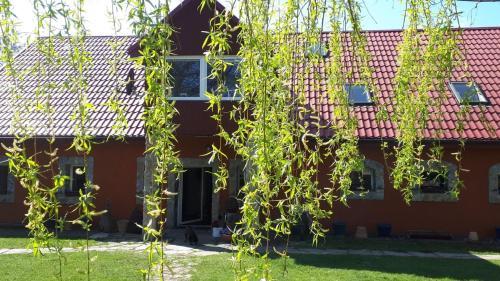 Chata na Borowinowej, Lubań