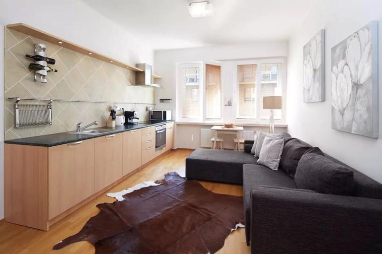Beautiful Apartment in Prague center, Praha 7