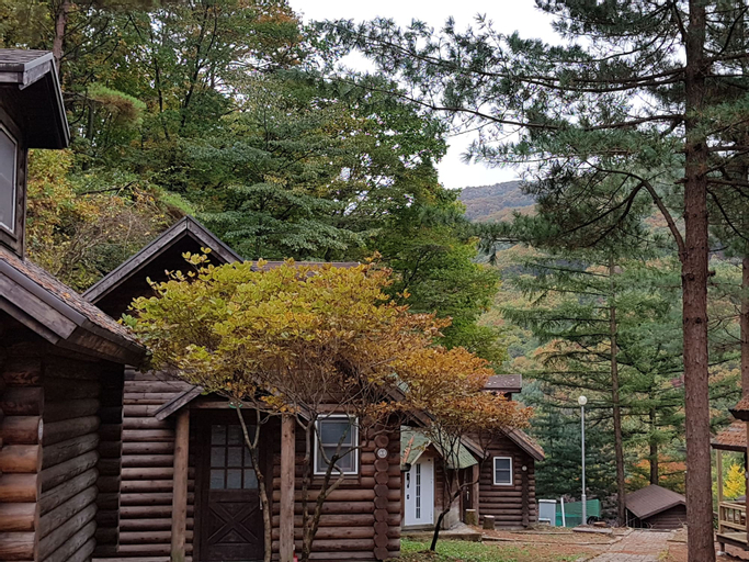 Dunnae Nature Forest Lodge House, Hoengseong