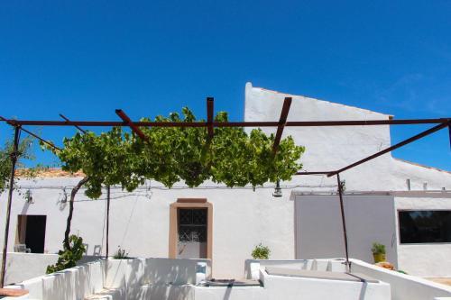 MasBelvedere, Faro