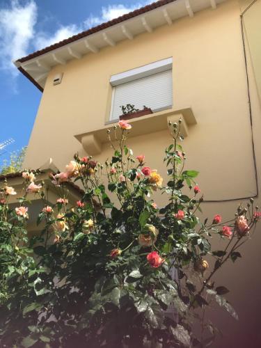 A casa do bairro, Lisboa