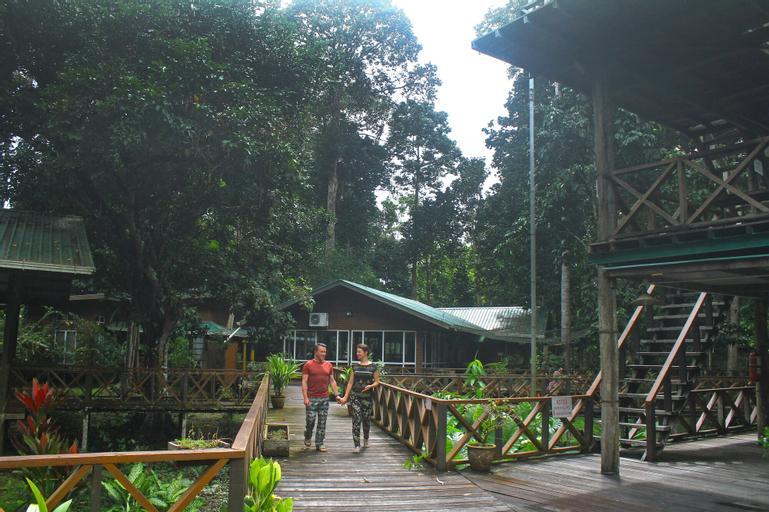 Borneo Nature Lodge, Kinabatangan