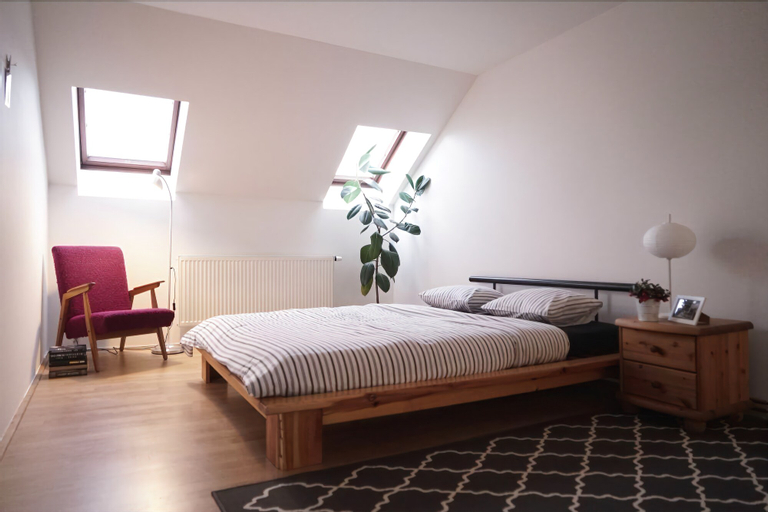 Attic Flat With Amazing Terrace, Praha 2