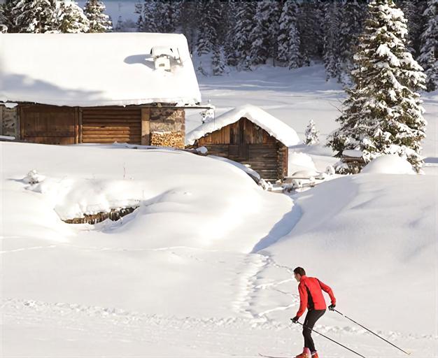 Alpine Touring Hotel, Trento