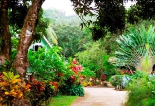 Coffeeriver Cottages,