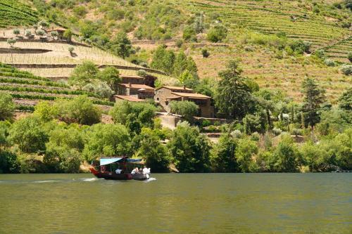 Quinta de S. Jose - Turismo Rural, São João da Pesqueira