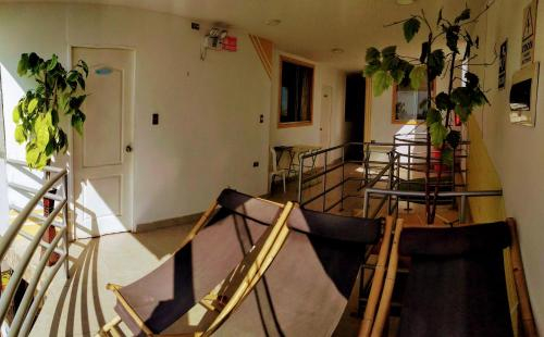 Hotel Ibiza, Ascope