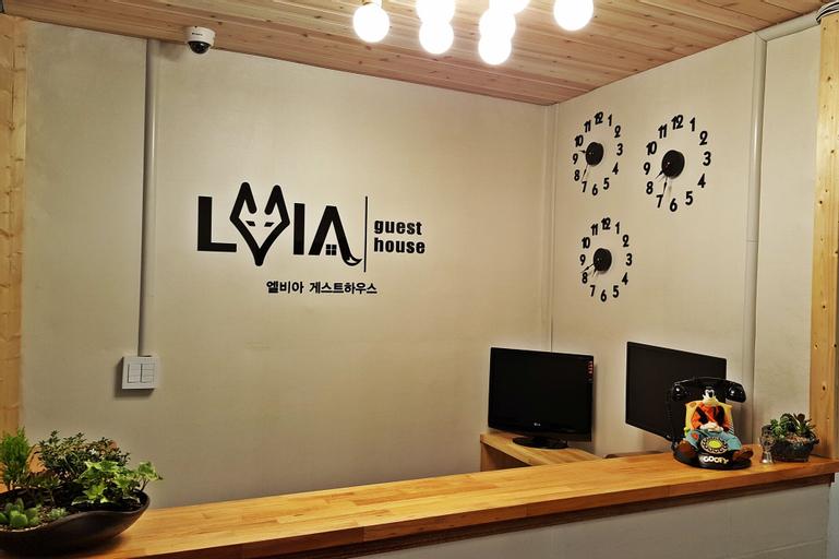 LVIA Guesthouse - Hostel, Seongbuk